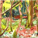 Forêts - Olivier Morel, Forêt aq 1, aquarelle/papier, 13 x 16,5 cm, 2015