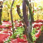 Forêts - Olivier Morel, Forêt aq 3, aquarelle/papier, 13 x 16,5 cm, 2015