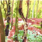 Forêts - Olivier Morel, Forêt aq 5, aquarelle/papier, 13 x 16,5 cm, 2015