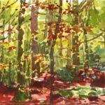 Forêts - Olivier Morel, Forêt aq 6, aquarelle/papier, 13 x 16,5 cm, 2015