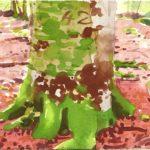 Forêts - Olivier Morel, Forêt aq 7, aquarelle/papier, 13 x 16,5 cm, 2015