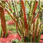Forêts - Olivier Morel, Forêt aq 8, aquarelle/papier, 13 x 16,5 cm, 2015