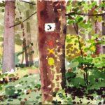 Forêts - Olivier Morel, Forêt aq 9, aquarelle/papier, 13 x 16,5 cm, 2015