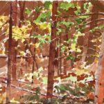Forêts - Olivier Morel, Forêt aq 12, aquarelle/papier, 13 x 16,5 cm, 2015