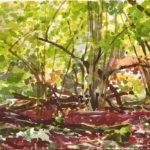Forêts - Olivier Morel, Forêt aq 13, aquarelle/papier, 13 x 16,5 cm, 2015