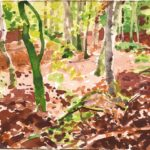 Forêts - Olivier Morel, Forêt aq 14, aquarelle/papier, 13 x 16,5 cm, 2015