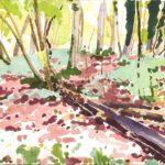 Forêts - Olivier Morel, Forêt aq 17, aquarelle/papier, 13 x 16,5 cm, 2015