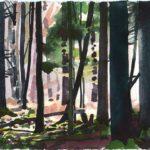Forêts - Olivier Morel, Forêt aq 19, aquarelle/papier, 13 x 16,5 cm, 2015