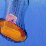 Nouveau monde, Olivier Morel - Méduses 10, acrylique/toile, 33 x 41 cm, 2013