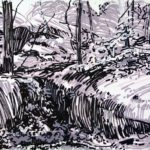 Olivier Morel, Forêts, Forêt, dessin, art contemporain