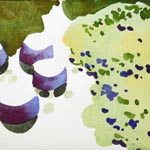 olivier morel japon jardin japonais